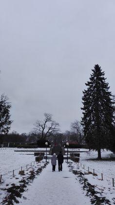 Un amor a la distancia que me hace recordarte Place: Kadriorg Park Snow, Outdoor, Long Distance Love, Outdoors, Outdoor Games, The Great Outdoors, Eyes, Let It Snow
