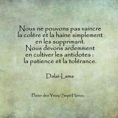 Dalaï Lama - 52 Citations