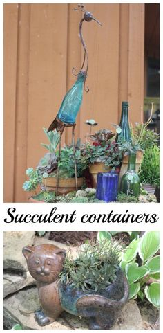 Succulent Containers.  Fun and funky!  Some great planting ideas for succulents.  - Momcrieff