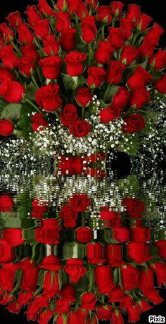 Good Night Flowers, Good Morning Beautiful Flowers, Good Morning Roses, Beautiful Bouquet Of Flowers, Beautiful Flowers Wallpapers, Beautiful Flowers Garden, Beautiful Love Pictures, Love Flowers, Beautiful Roses