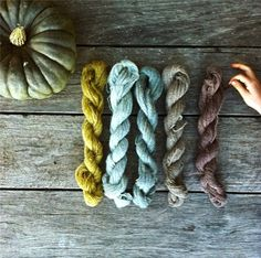 Natural Plant Dyes | Milkwood