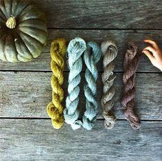 Natural Plant Dyes | Milkwood
