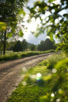♥ Fyra årstider - mitt liv på landet: sommar