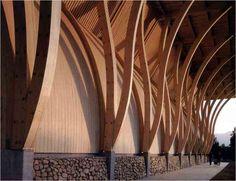 arquitecto jose cruz ovalle gana el premio spirit of nature