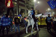 Ce ai pierdut aseară la protestul în care jandarmii au intrat cu caii printre oameni
