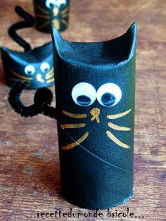 Des chats avec un rouleau de papier wc