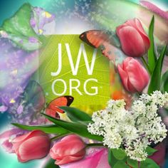 www.jw.org for answers from the Bible to life's biggest questions. Definitely worth checking it out.