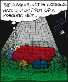 The mosquito net is working. Wait, I didn't put up a mosquito net.