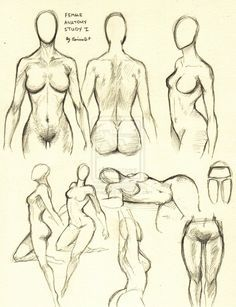 Female Anatomy Study 1 by ~0ImagInc0 on deviantART