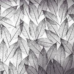 lensblr-network:    leaves  chrisfrey / archives  by Chris Frey