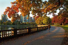 Stanley Park, Vancouver, Canada - Maxdigi - Fotolia.com