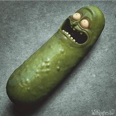 PICKLE RICK MOTHERFUCKERS