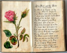 Artist's notebook dated 1824, under the name of H.C. Paulson Moleskine, Botanical Art, Botanical Illustration, Smash Book, Altered Books, Altered Art, Commonplace Book, Artist Journal, Nature Journal
