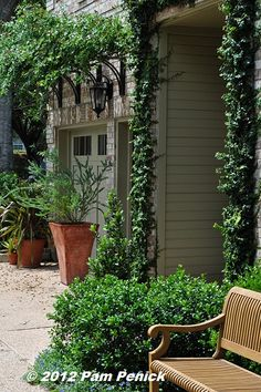 A nearly no-lawn front garden in Austin has a shady, French-style courtyard surrounded by sunny, southwestern-style garden beds Lawn And Garden, Garden Beds, Home And Garden, Outdoor Spaces, Outdoor Living, Landscape Design, Garden Design, Iron Pergola, Backyard Projects
