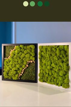 Moss Wall Art, Moss Art, Indoor Living Wall, Living Green Wall, Living Walls, Vertical Garden Plants, Pc Table, Green Wall Art, Hanging Plants