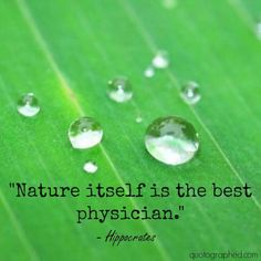 "Quotes about #Nature - ""Nature itself is the best physician."" - Hippocrates"