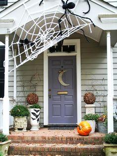 Giant Spiderweb