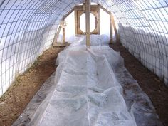 Cattle panels used for a hoop house for gardening