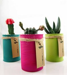 Cactus in a Can A great gift idea. These ones you can buy from The Neon Cactus. Poppytalk: 10 DIY Plant Ideas for Fall. Kaktus in plantenbak blik Neon Cactus, Cactus Flower, Flower Pots, Cactus Cactus, Diy Flower, Tin Can Crafts, Diy And Crafts, Creative Crafts, Craft Projects