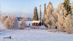Finland, Outdoor, Outdoors, Outdoor Living, Garden