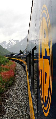 Train - Train from Anchorage to Seward, Alaska.  It will take you over the…