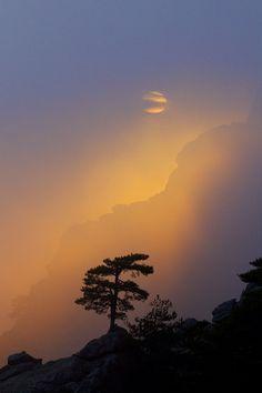 Light at sunset, Corsica, France, by Beautiful Sky, Beautiful World, Beautiful Places, Beautiful Pictures, Corsica, Landscape Photography, Nature Photography, Nova Era, Belle Photo
