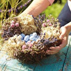 Beautiful basket-nest