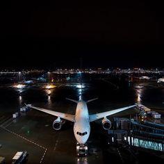 Night Flight - ANA B787 Dreamliner! by @duffy6319