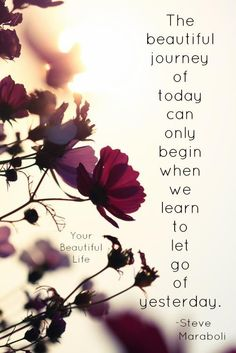 The beautiful journey of today can only begin when we learn to let go of yesterday.  ~ Steve Maraboli