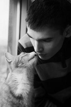 kitties, too