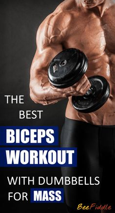 Biceps Workout with Dumbbells for Beginners