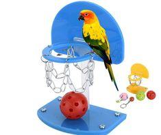 Joc pentru dezvoltarea agilitatii la pasari, jucarie gen baschet pentru perusi sau papagali Macaw Cockatiel sau Conure Cockatiel Toys, Budgies, Parrot Pet, Parrot Toys, Parrot Bird, Totoro, Pet Food Container, Bird Mom, Pet Guinea Pigs