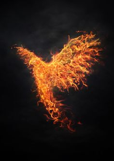 phoenix2 by igreeny
