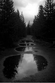 """*** Three Rivers Deep (book series) """"A two-souled girl begins a journey of self-discovery..."""" #Nature #threeriversdeep #Elemental #Devvi """"Three Rivers"""" pic: Inside my mind"""