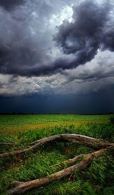 Fallen by Phil Koch - Storm roll through Wisconsin.