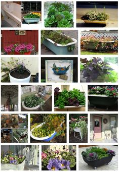 Need some large planters in your garden? Convert an old bathtub or washtub!