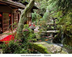 Japanese garden, Kyoto I want to go here! Japanese Garden Plants, Japanese Garden Landscape, Summer Landscape, Japanese Gardens, Kyoto, Japanese Lifestyle, Small Gardens, Zen Gardens, Contemporary Landscape