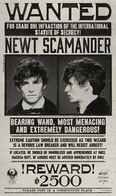 Wanted poster for Newt Scamander