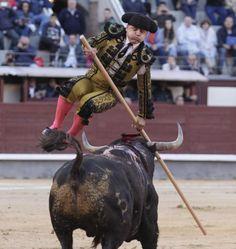 toro salta al tendido - Buscar con Google
