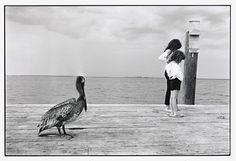 Photo © Elliott Erwitt / Sanibel Island, Florida / 1965.