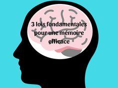 3 lois fondamentales pour une mémoire efficace Coaching, Trainers, Training