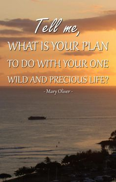 Tell me, what is your plan to do with your one wild and precious life? Healthy Prawn Recipes, Healthy Food List, Healthy Eating For Kids, Kids Diet, Healthy Preschool Snacks, Fun Snacks For Kids, Kids Meals, Yellow Summer Squash, Pineapple Images