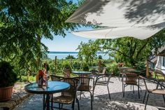 15+1 borterasz, mely minden Balaton-rajongó szívét megdobogtatja Botanical Gardens, Hungary, Patio, World, Places, Outdoor Decor, Travel, Beautiful, Home