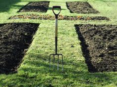 Top 10 Rules for Growing Veggies and Fruits : Home Improvement : DIY Network
