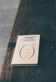 Book - A Rosa do Povo