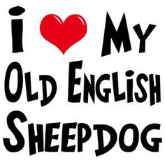 i❤️my old english sheepdog Dog Lover Gifts, Dog Lovers, Old English Sheepdog, Dog Quotes, Dog Cat, Cute Animals, Clip Art, Puppies, Thoughts