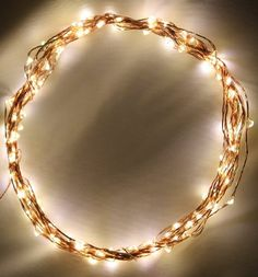 These are the lights I used on the acorn tree.  This string plugs into a wall outlet.  String Lights on Copper Wire by Deneve® - 120 Warm White LED - 20 Feet Long.