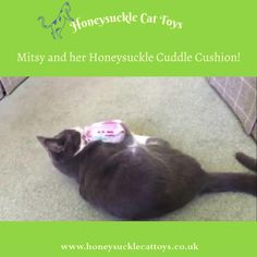 Mitsy loves bunny kicking her new Cuddle Cushion filled with fragrant Tatarian honeysuckle wood!