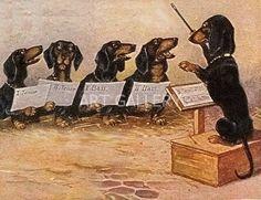 Dachshund Choir Matted Dog Art Print German New Vintage Dachshund, Dachshund Art, Daschund, Delphine, Weenie Dogs, Scottish Terrier, Baby Dogs, Otter, Dog Art
