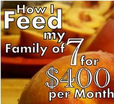 Feeding a Big Family for 400$ per Month on Money Saving Mom + More FAQ's *i wonder how much of the food on this list will be processed junk...?